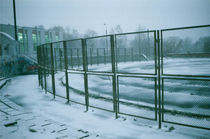 protection of the thrown nursery of an athletic field, Russia by yulia-dubovikova