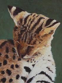 Serval Nap von Margaret Saheed