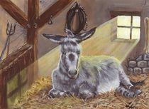 Der alte Esel von lona-azur