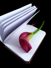 Poesie by Kerstin Runge