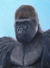 A Contemplative Gorilla by Margaret Saheed