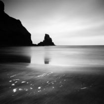 Scotland: Talisker Bay by Nina Papiorek