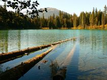 Larson Lake, British Columbia, Kanada by Jutta Ploessner