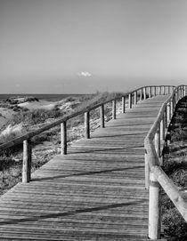 Dunes walkway by Sergio Duarte