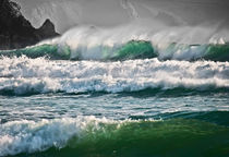 Wild waves by Christine Fitzgerald