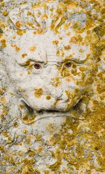 Stone lion with scary eyes von Lars Hallstrom