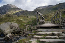 Pathway to Tryfan by Wayne Molyneux