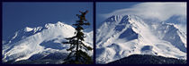 Mt. Shasta Collage by Christi Ann Kuhner