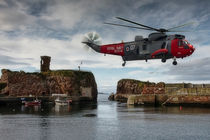 RAF Seaking by Sam Smith