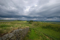 Hadrian's Wall by Nigel  Bangert