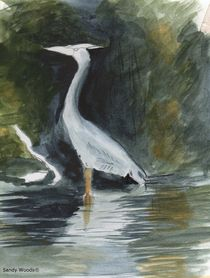 Watercolor of a Grey Heron von Sandra Woods