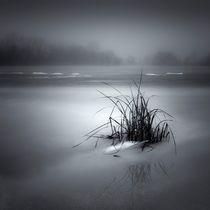 Islet by Jaromir Hron