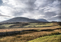 A View Over Ingleborough von sandra cockayne