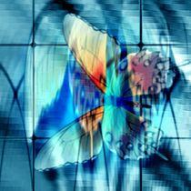 Alter Falter auf blauem Glas. by Bernd Vagt