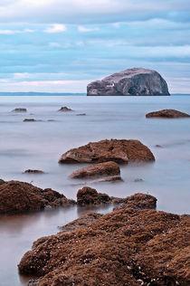 The Bass Rock von Amanda Finan