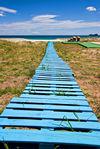 Improvised-boardwalk