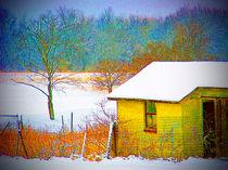 Vivid Snowfall von Sandra Woods