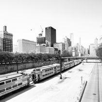 Chicago Skyline by Rob van Kessel