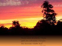 Sonnenaufgang by Tina M. Emig