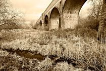 Hockley Railway Viaduct by Steven Poulton
