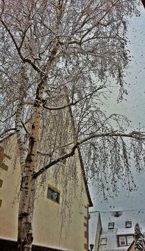 Es-schneit