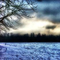 Abendhimmel im Winter von Ursula Wolfangel-Hoppmann