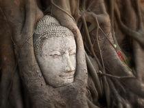 Thailand-laos-6296-nik