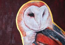 Barn Owl by Kristin Frenzel