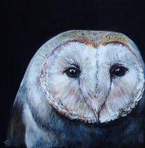 Darkbarnowl01