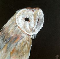 Night Owl by Kristin Frenzel