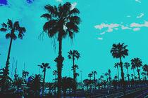 Palms Blue by Sergio Otero