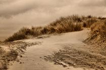 Beach-rock-black-sands-tues-17-dot-4-12-097-fhdr
