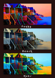 Funky Beach Huts Collage von sandra cockayne