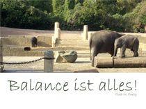 Balance by Tina M. Emig