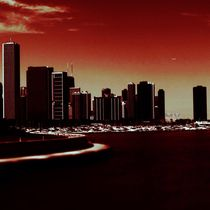 Chicago skyline by Monika Ashwin Vasuki