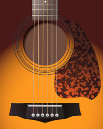 guitar von Miro Kovacevic