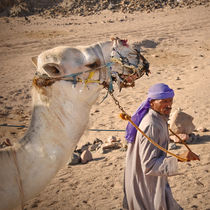 Bedouin with camel in the desert von Tanja Krstevska