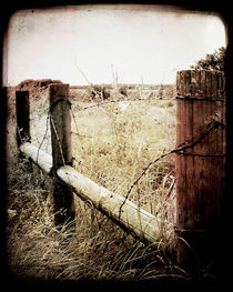 When Time Fades by Trish Mistric