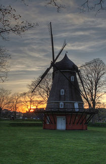 Mill in Copenhagen by Anton Budkin