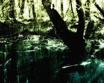 Magic-pond-large