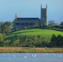 Down Cathedral and Swans by John McCoubrey