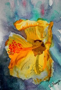 Yellow Hibiscus Shadows von Warren Thompson