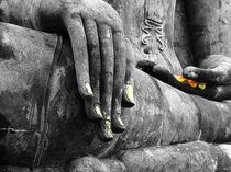Buddha Sudbuing Mara by serenityphotography