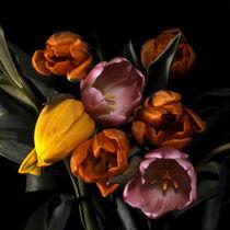 tulpenbouquet von helmut krauß