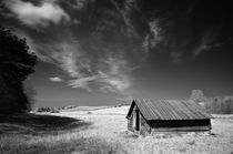 The shed by cvc-photo