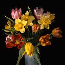 blumenstrauss mit tulpen und narzissen von helmut krauß