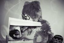 Teddy liest Murakami ́s Kafka am Strand von Stephanie Wüstinger