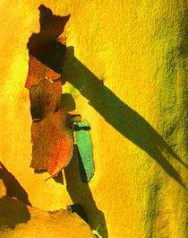Summer Eucalypt Abstract 17 von Margaret Saheed
