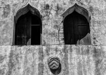 Twin Windows by Sergio Otero
