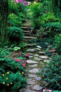 220af-stepping-stone-garden-970087-002-v-14
